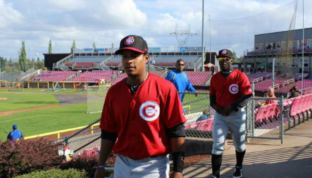Vancouver Canadians: First 1/4 Update and Review, Predictions for Season