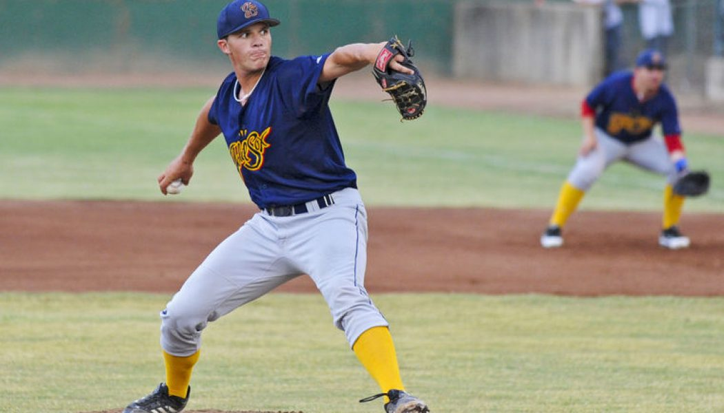 Colorado Gold Sox Roster Overview