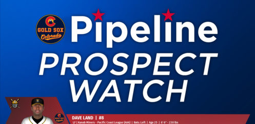 Prospect Watch: #13 Dave Land
